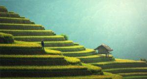 Ninh Binh Tourist Center Vietnam